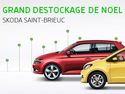 Grand d stockage de no l for Garage automobile saint brieuc